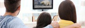 Regarder des documentaires animaliers serait bon pour la santé