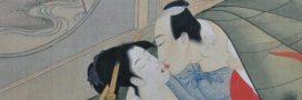 Le ginseng pour une meilleure sexualité: entre légende et réalité, que croire?