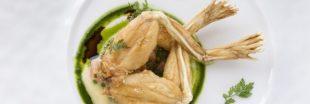Manger des cuisses de grenouilles, une menace pour la biodiversité ?