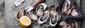 Tout ce que vous avez toujours voulu savoir sur les fruits de mer… sans oser le demander.