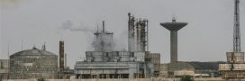 La pollution à l'ammoniac augmente dangereusement