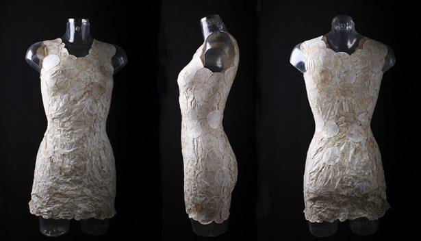 bio design, Aniela Hoitink, robe en miscelliums