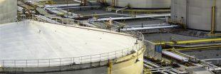 Total : son projet de bioraffinerie inquiète les défenseurs de l'environnement
