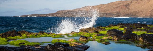 Exploiter les fonds marins pour développer les énergies vertes ?
