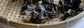 Rappel produit: champignons noirs déshydratés Eat The World – Auchan