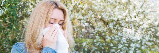 Soigner le rhume des foins grâce aux huiles essentielles