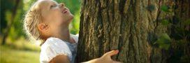 Et si l'arbre de l'année 2017, c'était le vôtre?