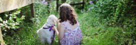 Médiation animale: la communication non-verbale en soutien aux autistes