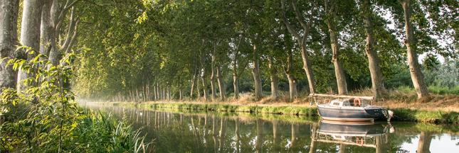En marche pour sauver le canal du Midi ! (on peut courir aussi)