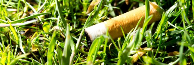 Fumer tue… l'environnement!