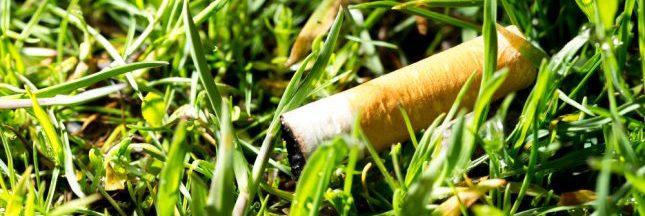 Fumer tue... l'environnement !