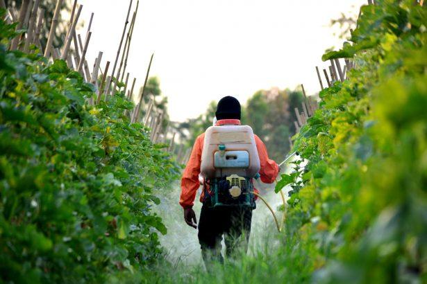 épandages de pesticides