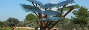 eTree, le premier arbre aux feuilles photovoltaïques inauguré à Nevers