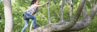 4 activités pour ce weekend en forêt avec vos enfants