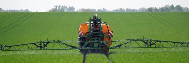 Glyphosate: malgré les dangers, on est loin de l'interdiction