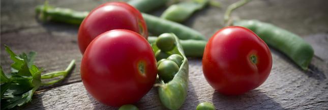 Les lectines: le nouveau danger de notre alimentation?