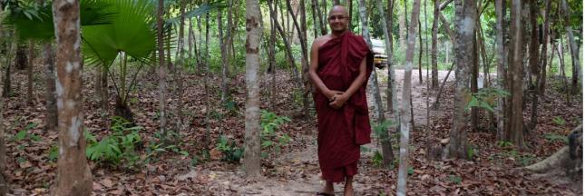 En Birmanie, un moine jardinier cultive des plantes et des âmes
