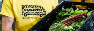 OzHarvest Market : la solution australienne contre le gaspillage alimentaire