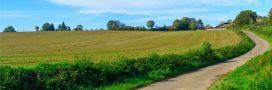 Accaparement de terres agricoles: la loi Potier est-elle suffisante?