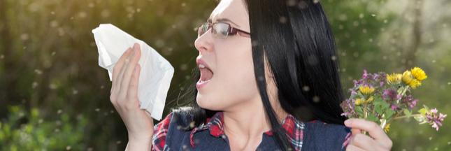 Allergies : pic de concentration de pollens de graminées cette semaine
