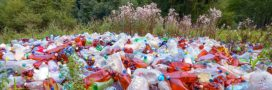 Un million de bouteilles en plastique est écoulé chaque minute dans le monde!