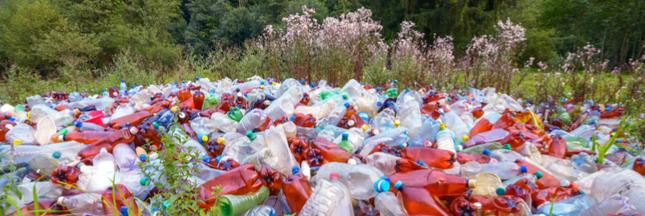 Un million de bouteilles en plastique sont écoulées chaque minute dans le monde !