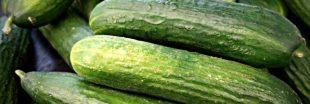Le concombre, votre allié santé pour l'été