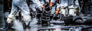Nettoyage des océans : 'Pure' une éponge révolutionnaire récompensée