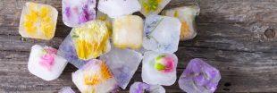 Des glaçons floraux pour une peau tonique !