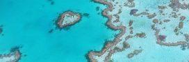 Grande barrière de corail: un projet de mine géante très controversé