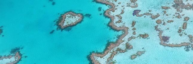 Grande barrière de corail : un projet de mine géante très controversé