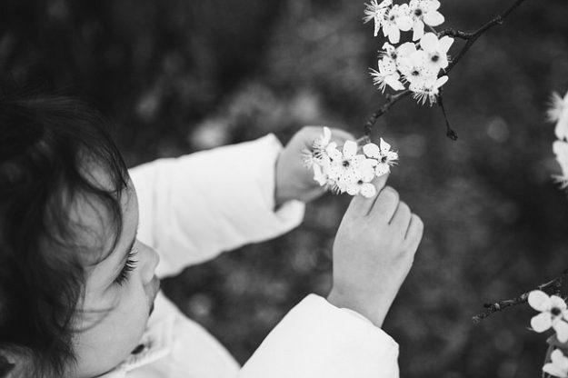 élixirs floraux pour enfants