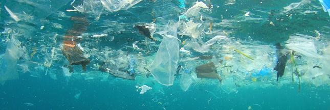 L'ONU appelle à sauver les océans en péril