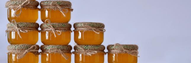 L'effondrement de la production de miel en France