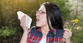 Allergies: pic de concentration de pollens de graminées dans les prochaines semaines