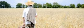 Le gouvernement signe un énorme coup d'arrêt au développement de l'agriculture bio