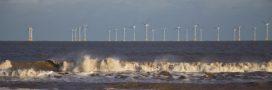 Eolien offshore: l'Allemagne avance, la France temporise