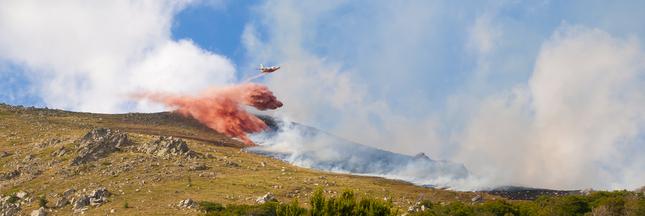 Incendies dans le Var : plus de 4.000 hectares brûlés
