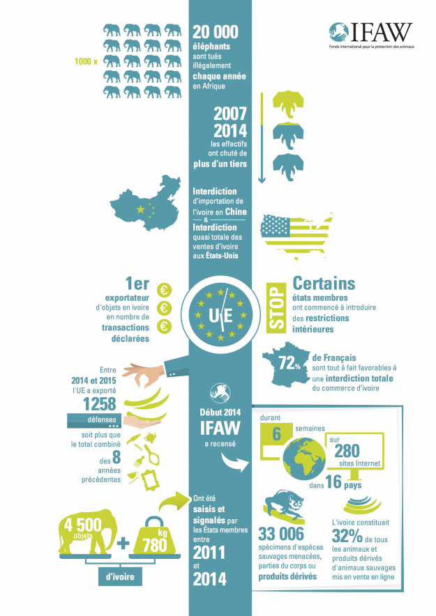 ivoire en Europe, IFAW infographie