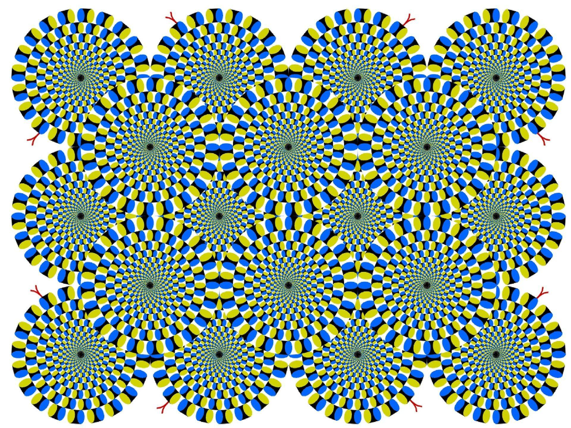 illustion optique geometrie