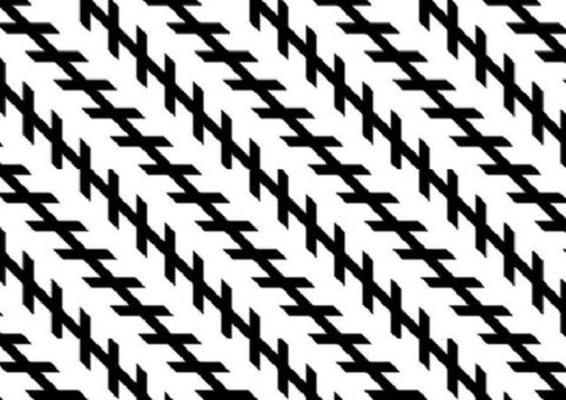 illusion zollner