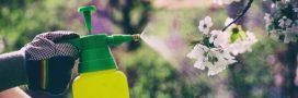 Vente de pesticides en libre-service: de nombreuses enseignes en infraction