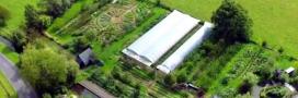 Les petites fermes et micro fermes sont-elles l'avenir de l'agriculture?