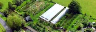Les petites fermes et micro fermes sont-elles l'avenir de l'agriculture ?