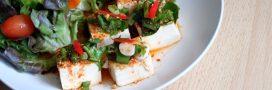 Découvrez les bienfaits du tofu lactofermenté