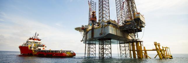 Rendre la prospection de gisements plus respectueuse des cétacés avec la technologie Vibroseis Marin
