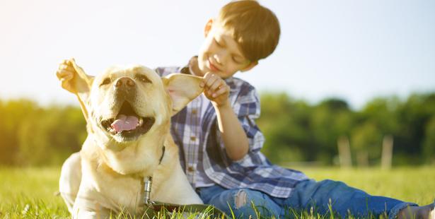 enfants grandir avec des animaux santé