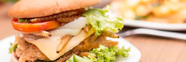 Des burgers aux insectes dès aujourd'hui dans les supermarchés