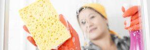 Les éponges de cuisine contiennent plus de bactéries que les toilettes