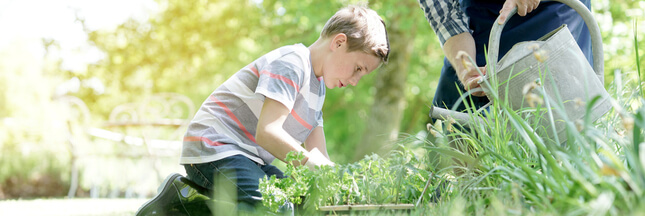 jardiner août